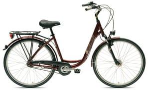 Ein Beispiel-Fahrrad für Ihren Aufenthalt an der Elbe