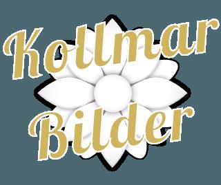 Bilder über das Elbe-Boardinghouse, Kollmar, Glückstadt und Umgebung